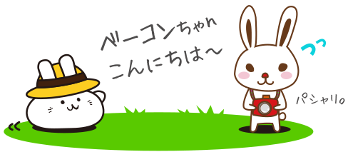 ベーコンちゃんこんにちは〜