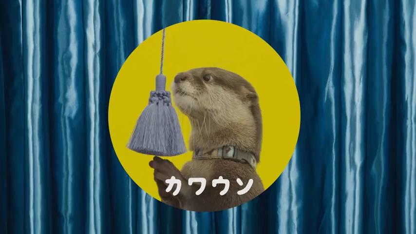 【フォント使用例】サンシャイン水族館 テレビCM スクリーンショット(カワウソ)