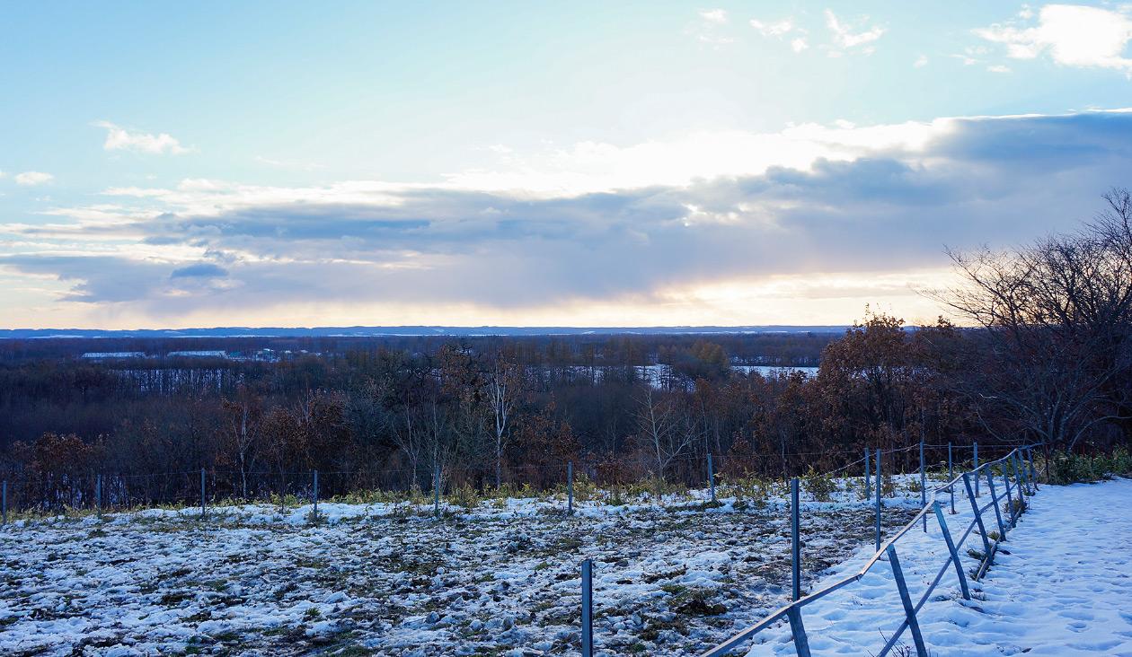 【冬の十勝牧場展望台へ徒歩でウォーキング】(7:37)少しゆるやかな坂を登ったら。展望台入り口に着きました。眺めはよさそう。