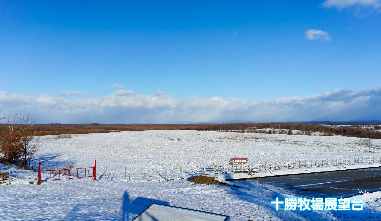 【雪原と紅葉広がる十勝牧場展望台】(7:52)展望台をのぼったところ。目の前には十勝平野が広がります。